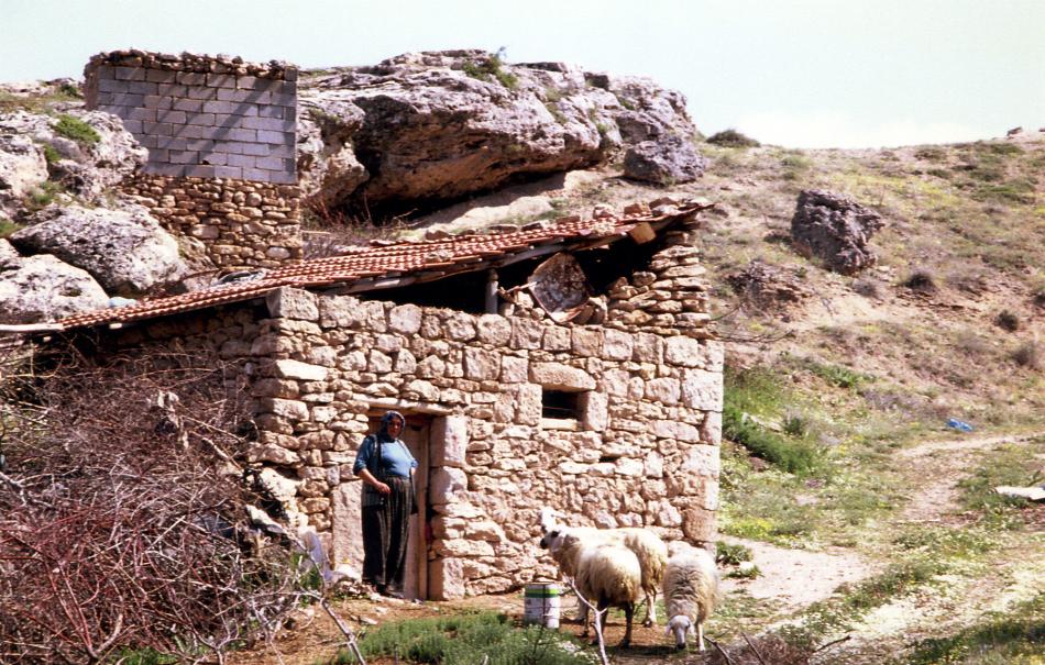 village nearby 5