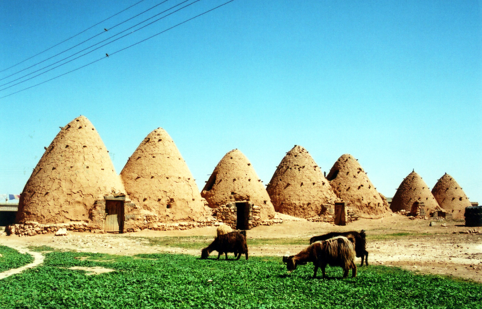 beehive houses 1