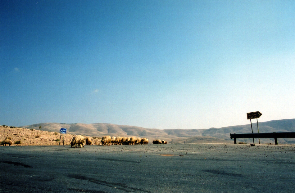 road from dead sea to madaba